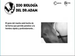 Zoophilia] Art Of Zoo - Lady Fucking Her Dog - ZooJizz - Free Porn ...