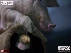 [Zoo] ArtOfZoo  - Pig Porn , Girl Sex Animal