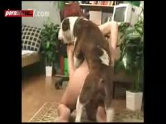 amazing dog sex with curly girl